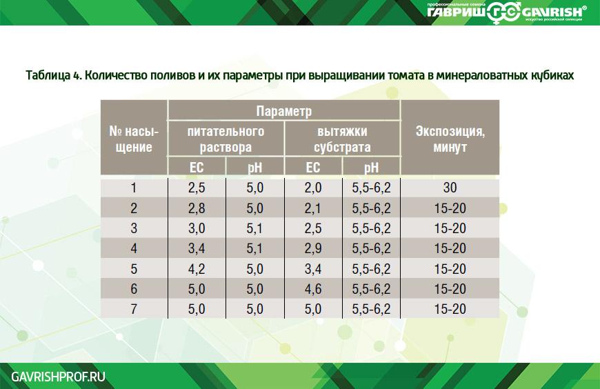 Количество поливов и их параметры при выращивании томата в минераловатных кубиках