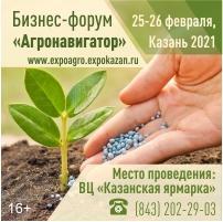 Казанская ярмарка 2021