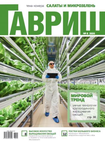 Обложка нового номера журнала «Гавриш» №6/2020