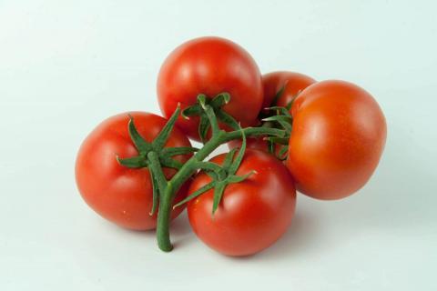 томат F1 «Гангут» фото плодов