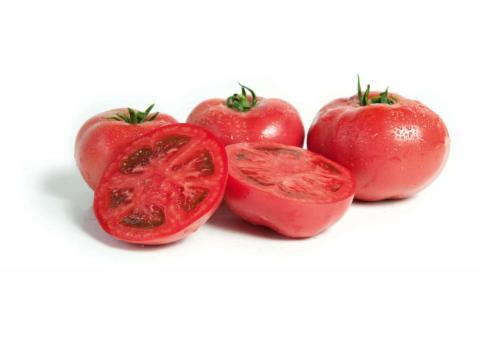 Гавриш Профессиональные семена томат Херсонес