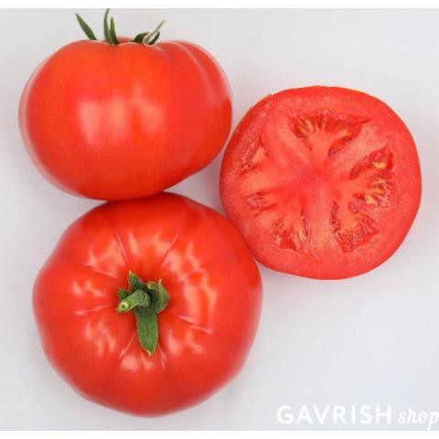 F1 Аркаим томат. Фото продукции
