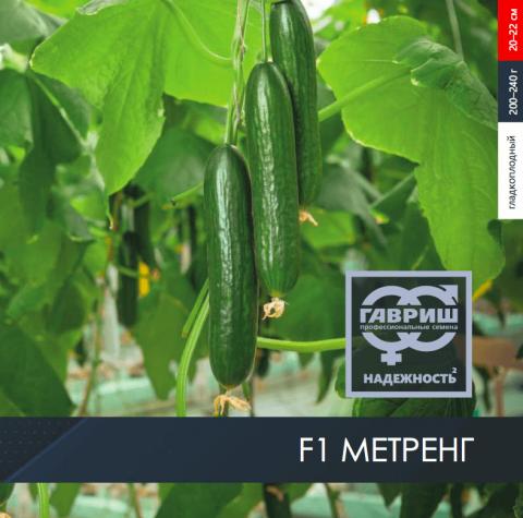 Огурец F1 Метренг серии «Гавриш Профессиональные семена»