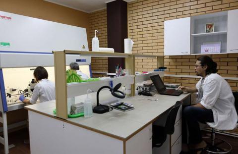 Компания «Гавриш» на базе Крымского селекционного центра оборудовала лабораторию биотехнологии специально для получения дигаплоидных линий различных овощных культур
