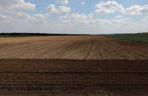 Посев и полив в засушливых условиях юга России
