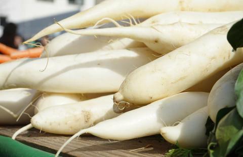 Дайкон востребован на рынке овощей