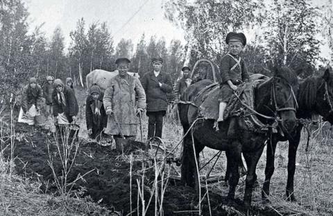 Выращивание овощей в суровых условиях Урала