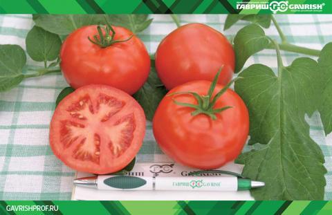 Влияние сортовой реакции томата на применение координационных соединений микроэлементов